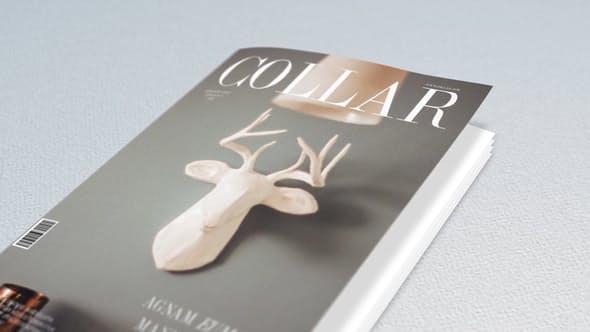 Book and Magazine Promo